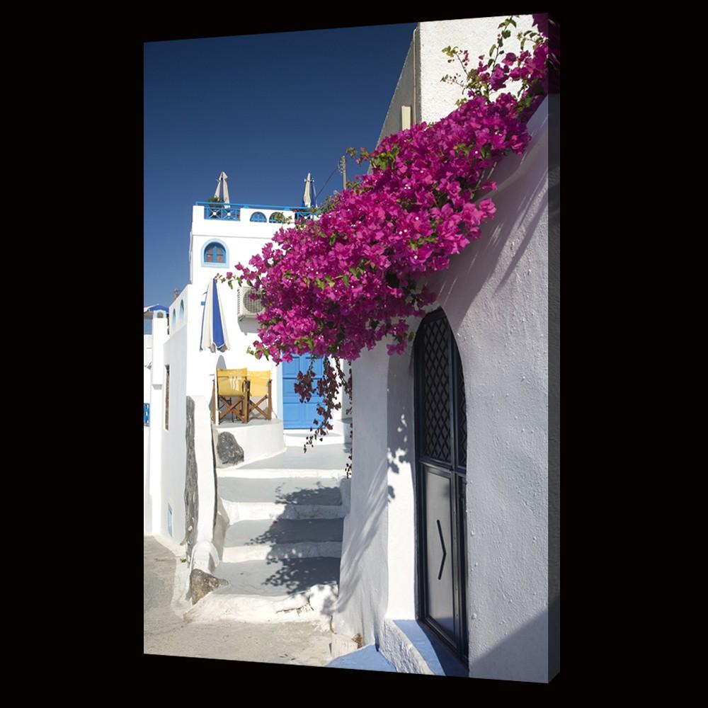 Bouganvillia in Greece