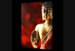 Buddha Wave